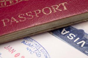 e-verify background check