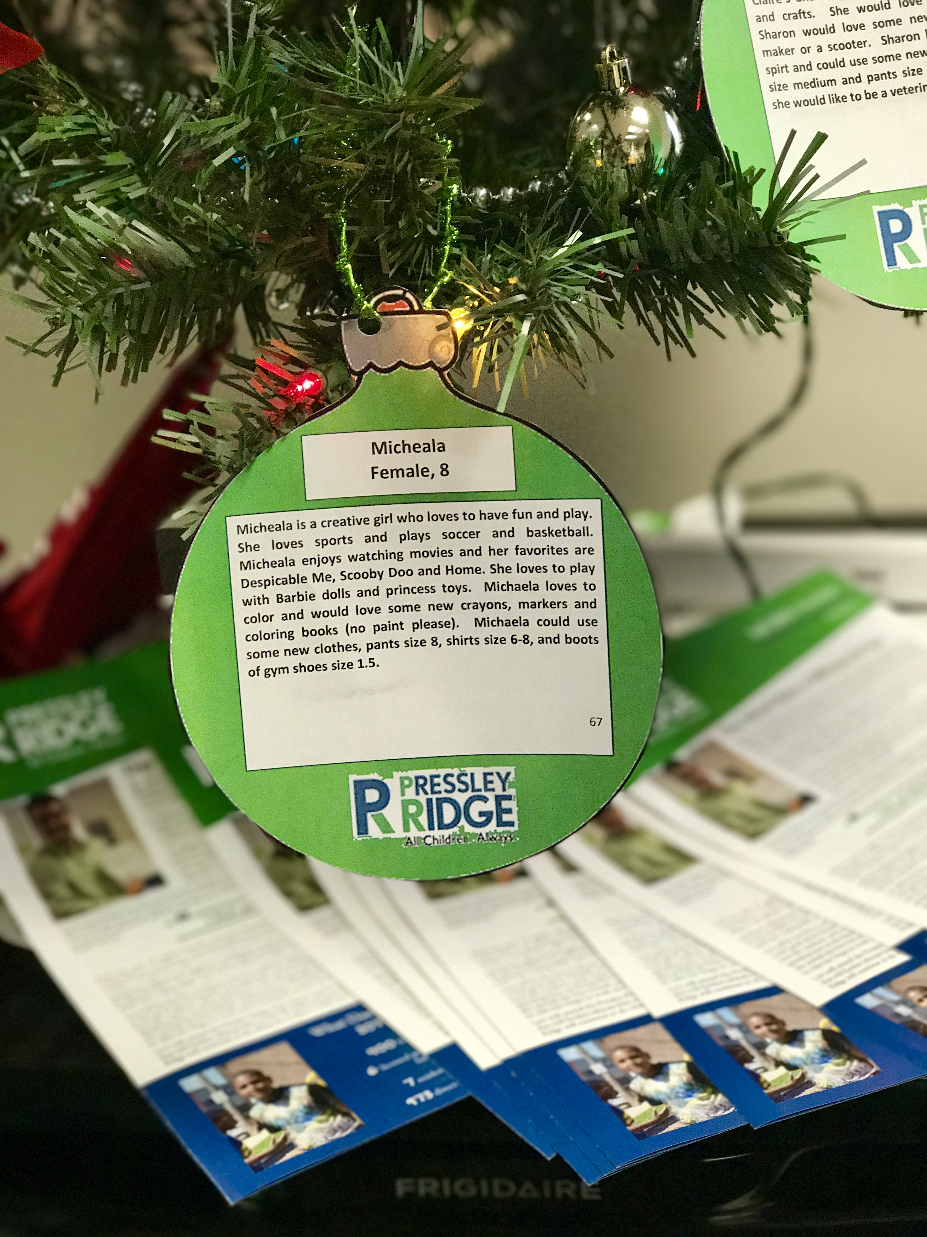 Photo: Pressley Ridge Ornament on the SELECTiON.COM® Giving Tree
