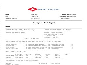 Pre-Employment Credit Report Sample